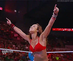 Category: wrestling animated GIFs