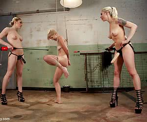 Category: lily labeau